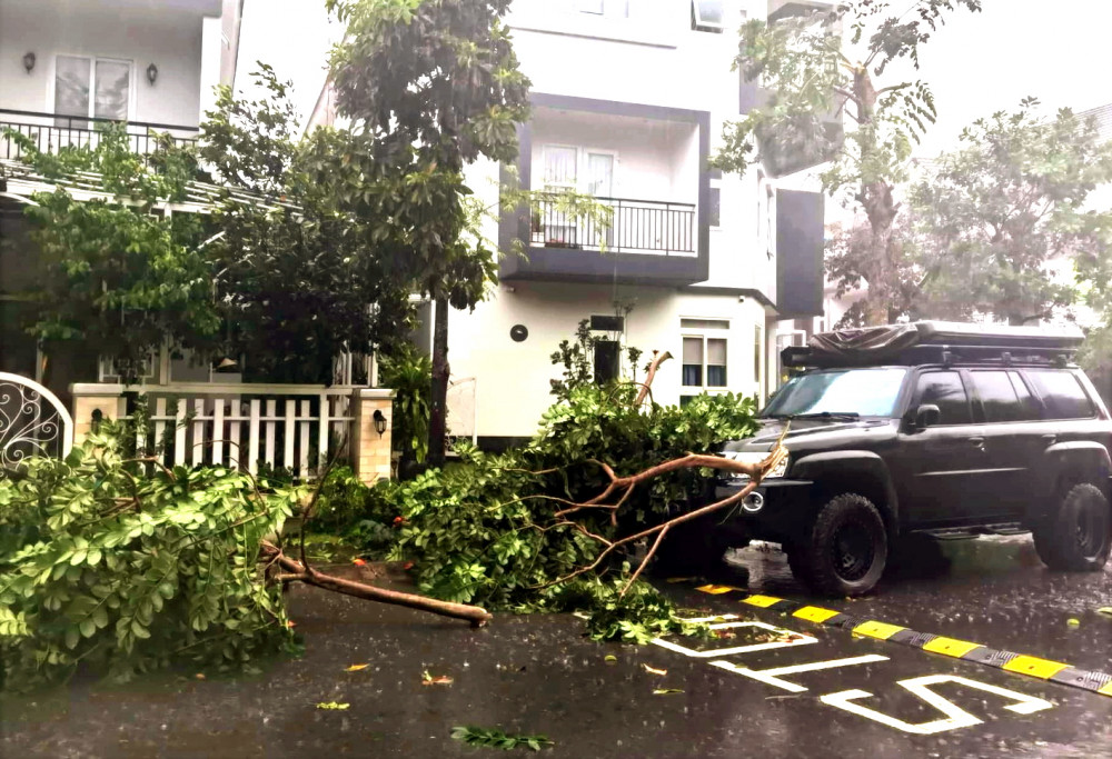 Cây xanh trong khu dân cư Park Riverside (quận 9, TPHCM) ngã, gãy la liệt chỉ sau một trận mưa khiến người dân lo lắng về nguy cơ tai nạn