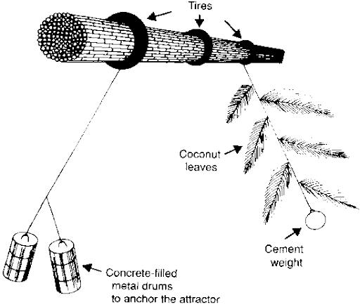 Thiết bị thu hút cá thô sơ của ngư dân Philippines gọi là Payaos, bao gồm một dây neo và một chùm lá cọ để dụ cá buộc chặt vào phao hoặc thuyền nhỏ.