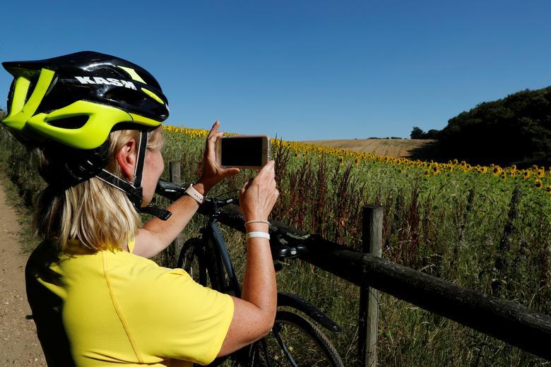 Một người chạy xe dừng lại chụp ảnh đồng hoa ở