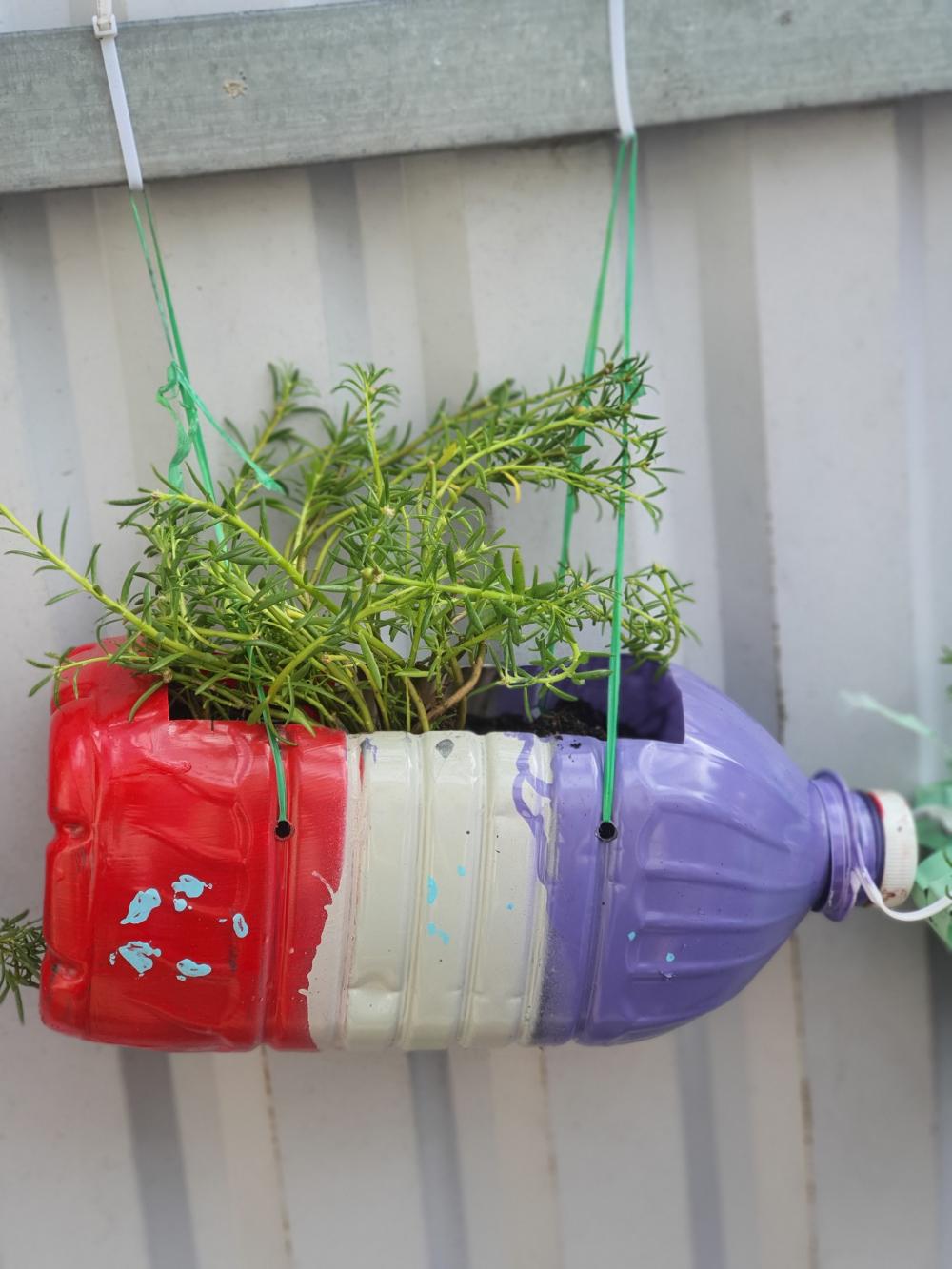 Biến tấu các loại chai nhựa thành bồn trồng hoa.