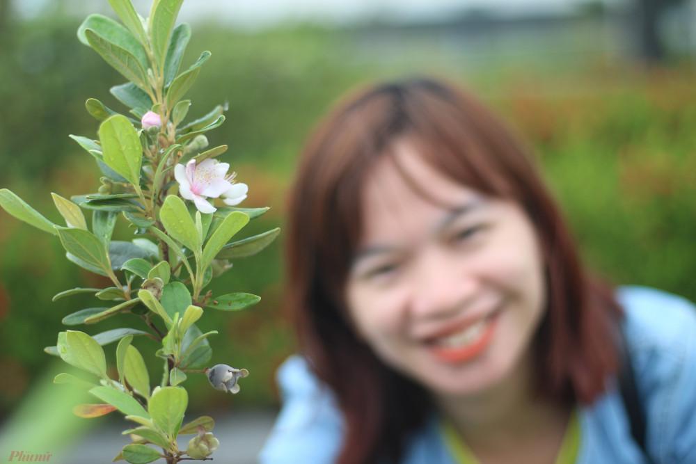Hoa sim khi nở có màu trắng, chuyển dần sang màu tím rồi tàn.