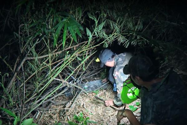 Hai người đàn ông miền Tây đang mở bẫy bắt rắn. Ảnh: kienthuc.net.vn