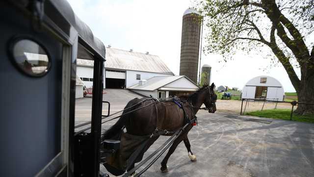Phòng xét nghiệm COVID-19 lưu động do ngựa kéo đang được sử dụng để tiếp cận với cộng đồng dân cư người Amish - Ảnh: wbaltv
