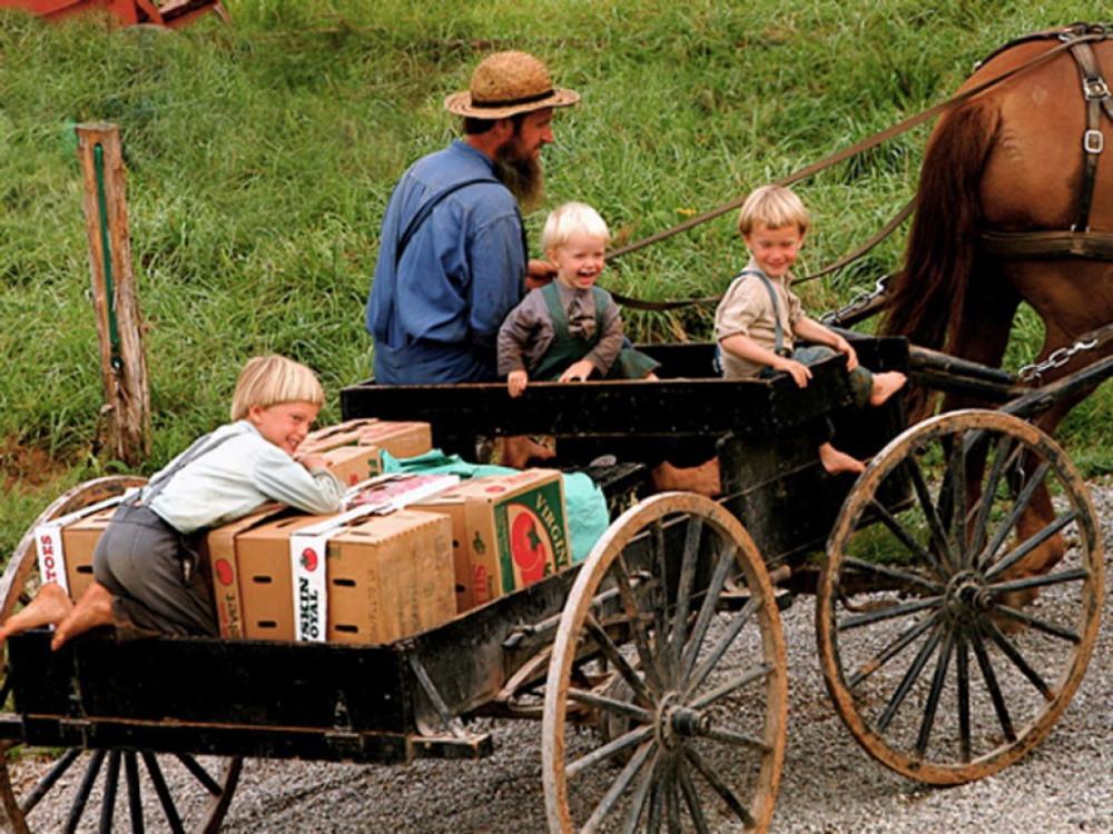 Người dân Amish lựa chọn lối sống đơn giản, tránh xa các tiện nghi hiện đại của thế giới văn minh - Ảnh: cpournous
