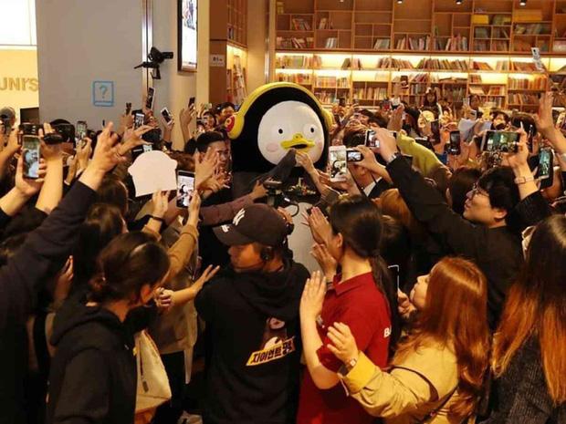 Pengsoo thường xuyên được khán giả vây quang mỗi lần xuất hiện.