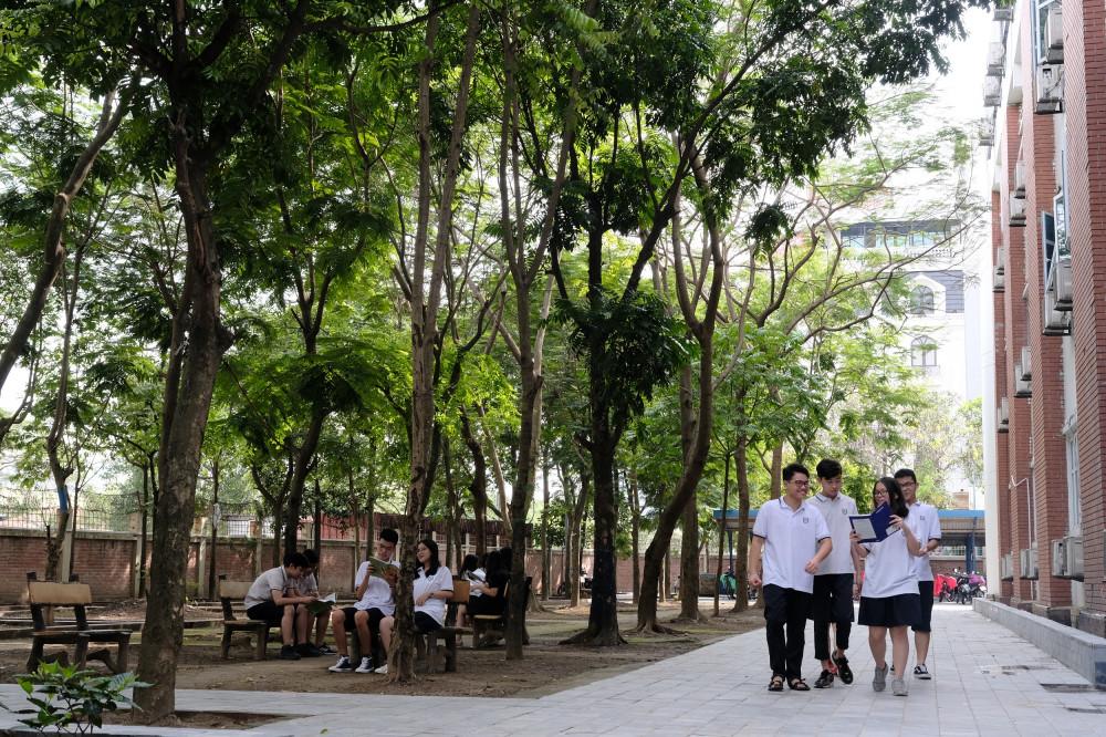"""Không gian xanh mát tại Trường THPT Lương Thế Vinh, Hà Nội – một trong nhiều ngôi trường trên cả nước mà """"Quỹ 1 triệu cây xanh cho Việt Nam"""" đã trao tặng cây xanh. Ảnh: Vinamilk cung cấp"""