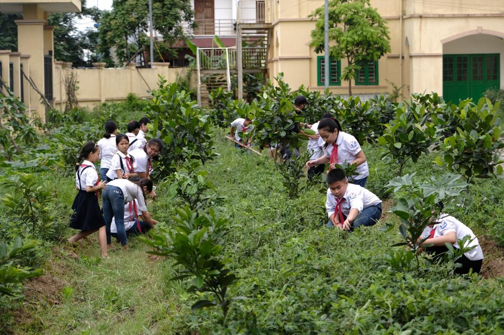 """Các em học sinh chăm sóc vườn cây được """"Quỹ 1 triệu cây xanh cho Việt Nam"""" trao tặng, học cách phân biệt các loại cây, tìm hiểu lợi ích của cây với môi trường và cuộc sống. Ảnh: Vinamilk cung cấp"""