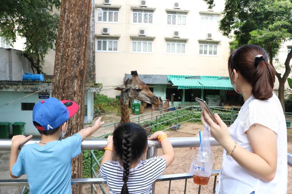 Các em nhỏ thích thú khi bạn hươu cao cổ đến gần