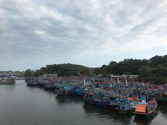 Tàu câu mực của ngư dân Quảng Ngãi bị một tàu hàng lạ đâm chìm khiến 1 ngư dân mất tích trên biển, một người chết trên đường đưa về bờ, nhiều người bị thương
