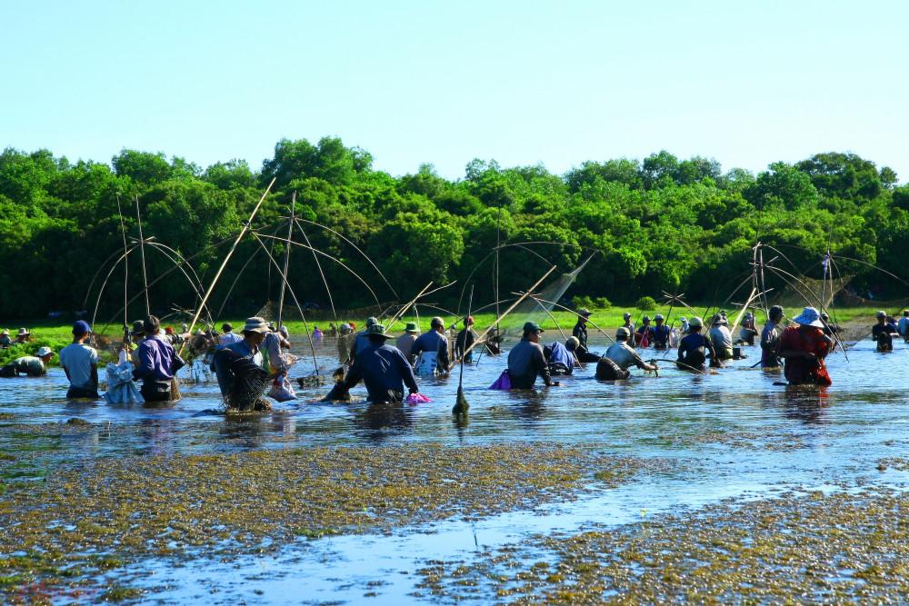 """Theo ông Cáp Hữu Hanh, Trưởng Ban quản lý Khu sinh thái Trằm Trà Lộc: """"Lễ hội """"phá Trằm"""" có từ hơn 300 năm trước. Lễ hội thường tổ chức sau khi vụ vụ lúa hè thu kết thúc, với mục đích xả nước trong đầm để đón mùa mưa lũ mới."""