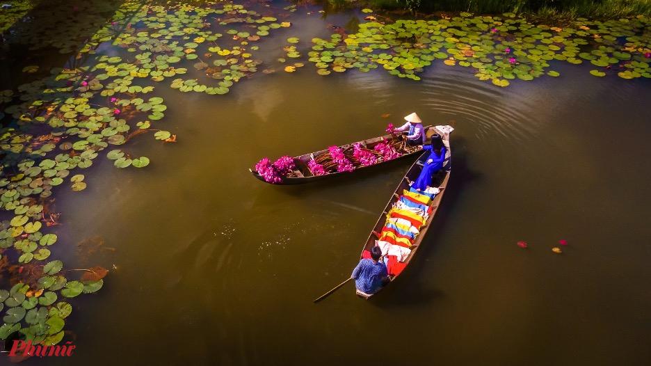 Khung cảnh mang đến cảm giác bình yên và nét đẹp riêng của vùng sông nước miền Tây.