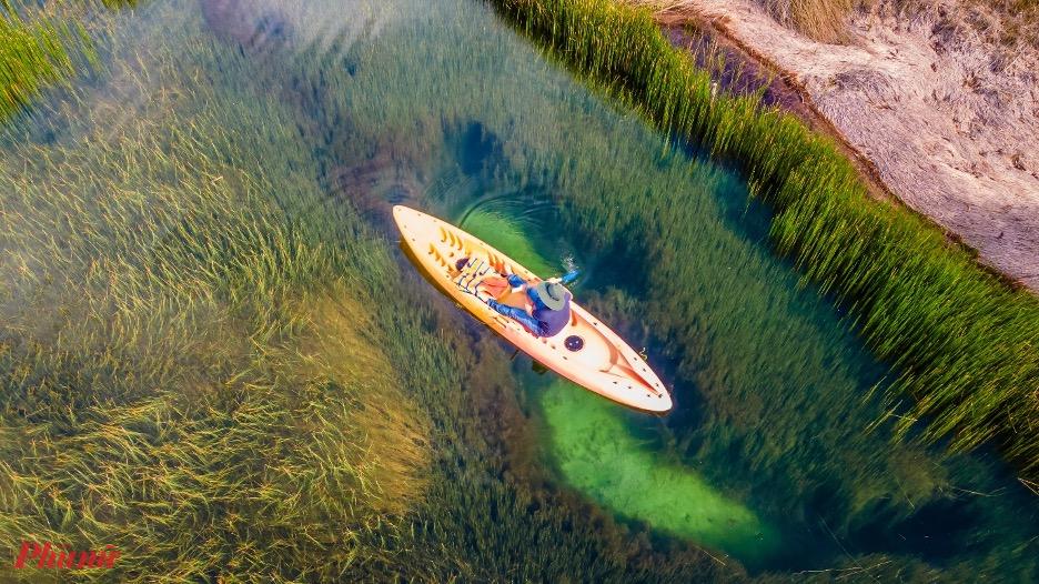 Mọi người tha hồ bơi thuyền kayak