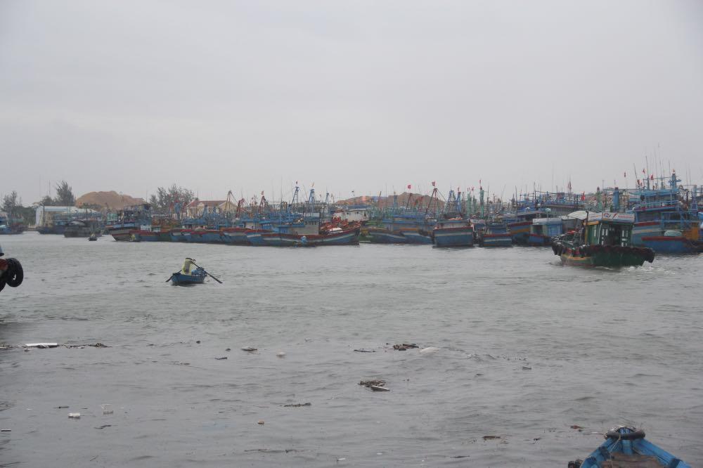 tỉnh Bình Định thường xuyên cập nhật thông tin, thông báo kịp thời cho  các phương tiện, tàu thuyền đang hoạt động trên biển biết vị trí, hướng di chuyển và diễn biến của bão số 5 để chủ động phòng tránh.