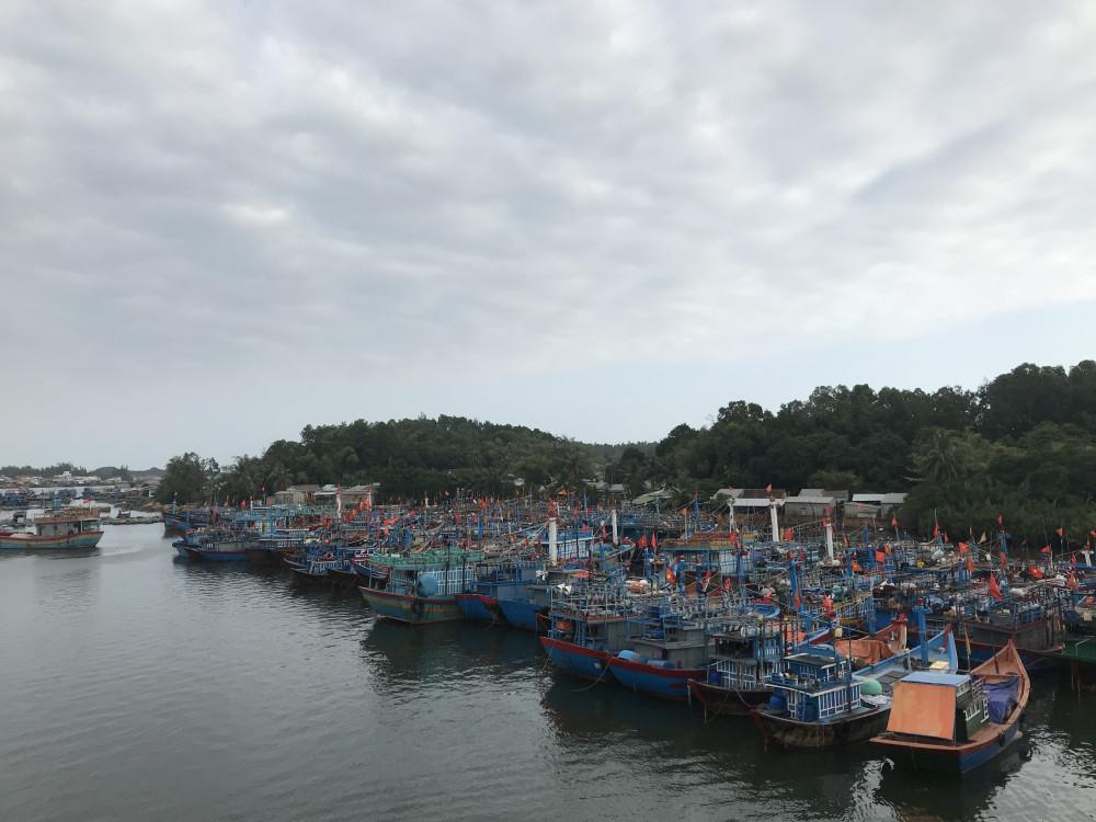 Tàu thuyền của ngư dân Bình Sơn neo đậu dừng hoạt động từ 13 giờ chiều nay