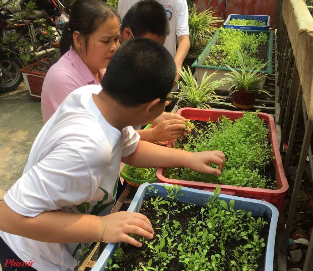 Giờ học hướng nghiệp của các em học sinh trường chuyên biệt Bình Minh