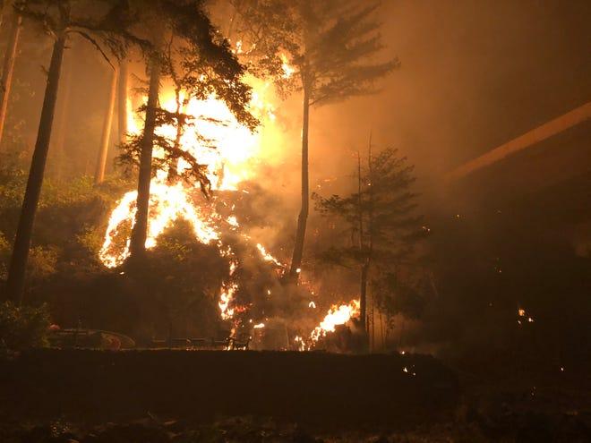 Sự cố của ông xảy ra Ngày Lao động của nước Mỹ (7/9), khi phần lớn hẻm núi Little North đã chìm trong ngọn lửa - Ảnh: USA Today