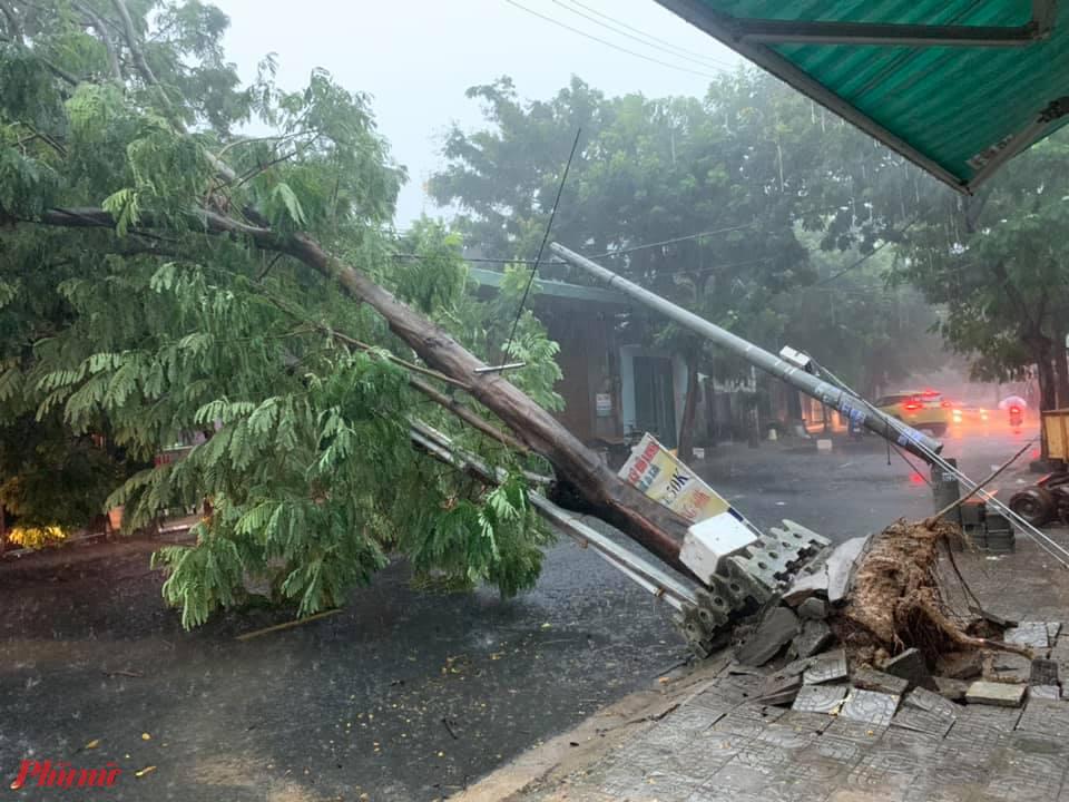 Cột điện, cây xanh ở phường Hòa An, quận Cẩm Lệ