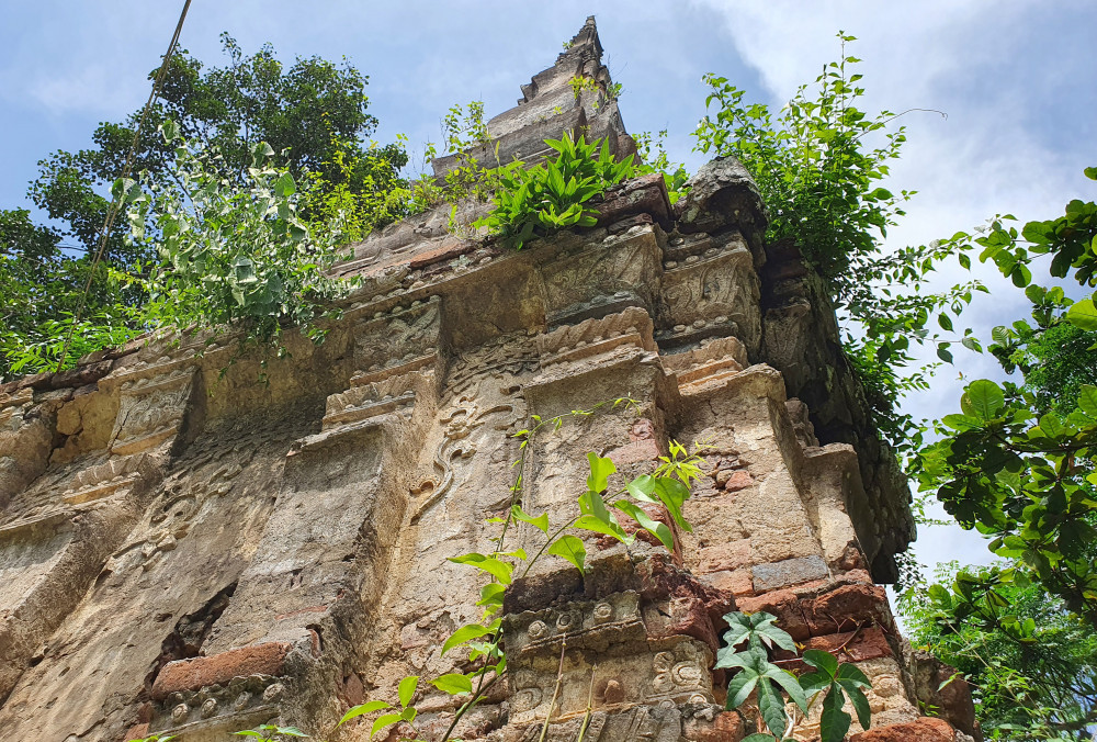 Cây dại mọc um tùm trên thân tháp - Ảnh Phan Ngọc