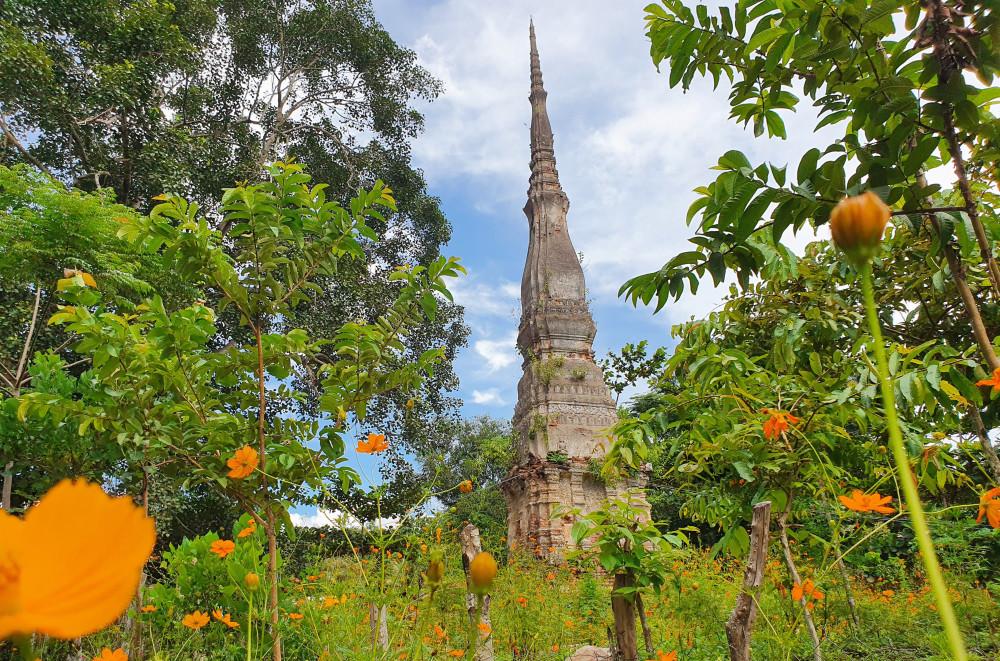 Tháp cổ Yên Hòa cao hàng chục mét sừng sững giữa đại ngàn - Ảnh Phan Ngọc