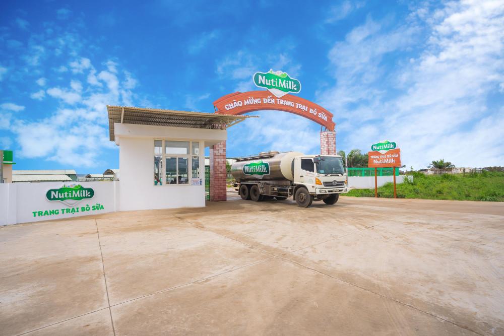 Xe bồn chở sữa từ trang trại về nhà máy. Tổng thời gian từ lúc sữa được vắt ra đến khi thành phẩm chỉ mất 9,5 tiếng