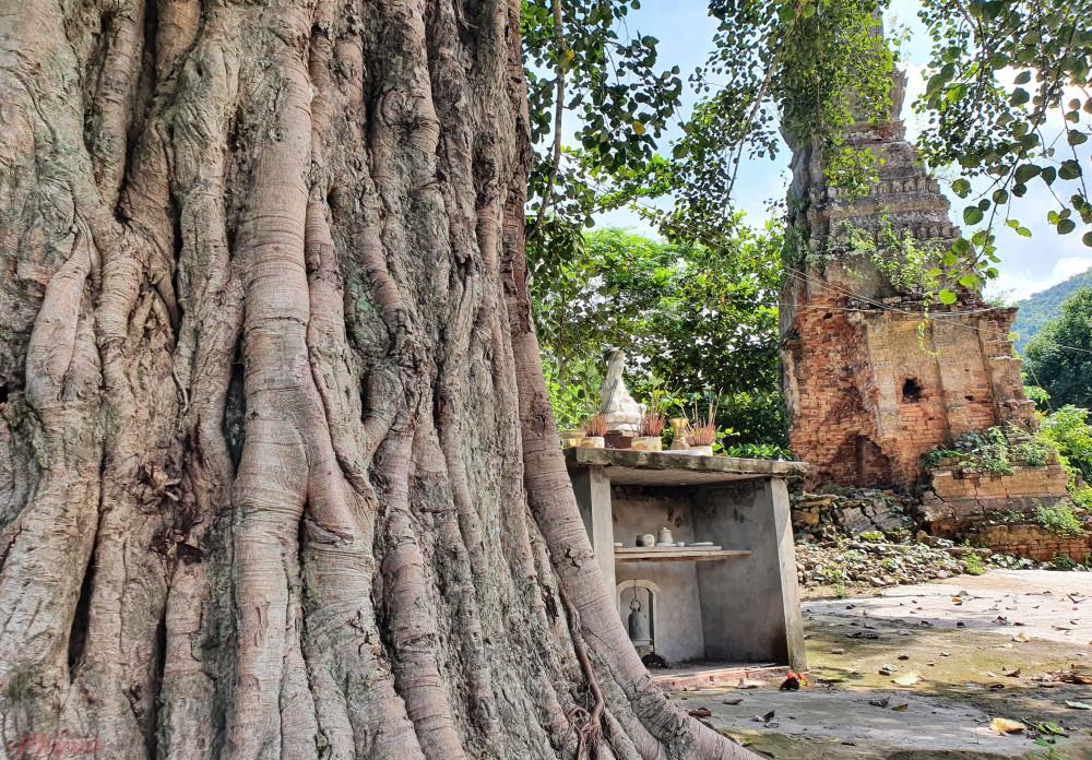 Hiện UBND huyện Kỳ Sơn cũng đã lên phương án chống sập cho ngọn tháp bằng cách làm khung tháp cao 5m bao bọc phần chân tháp.