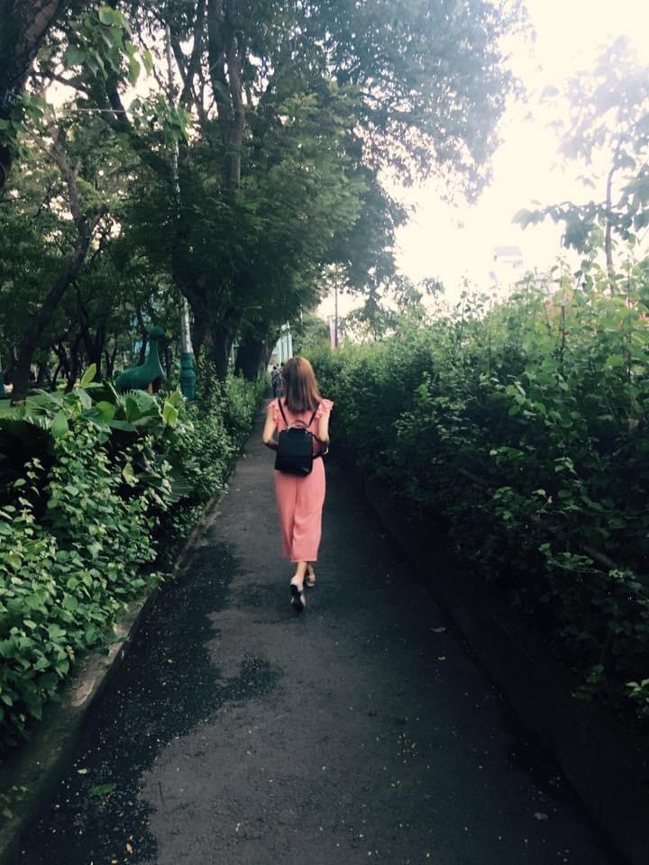 Lối đi xanh biếc trong công viên Phú Lâm