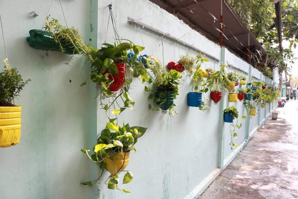 Tuyến hẻm xanh tại quận Gò Vấp sử dụng các vỏ chai tái chế để trồng cây treo tường-  Ảnh Thiên Ân
