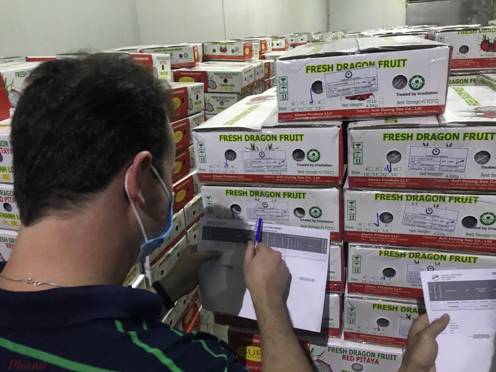 Chuyên gia Mỹ đang kiểm tra hàng trái cây tại một đơn vị chiếu sạ duy nhất của TPHCM trước khi xuất sang Mỹ. Ảnh: Quốc Thái