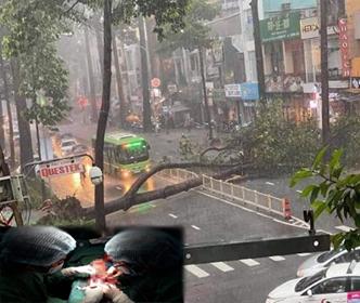 Cây xanh ngã chắn ngang đường Nguyễn Tri Phương trong cơn mưa chiều 24/9/2020 đã khiến anh G., quê Bến Tre tử vong