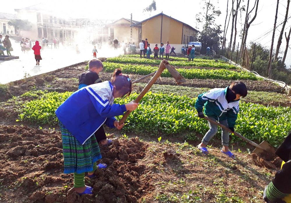 Hầu hết các trường bán trú vùng cao đều có những vườn rau do chính học sinh trồng. Đây là một trong nhiều cách định hướng nghề nghiệp cho học sinh - Ảnh: Uông Ngọc