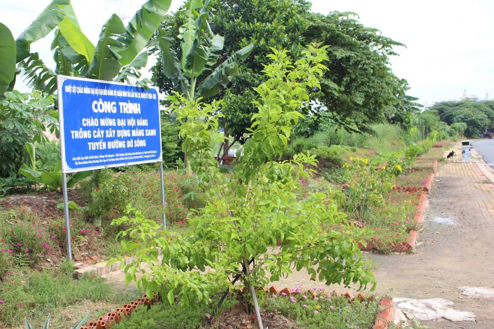 Một công trình trồng cây góp phần ngăn đổ rác