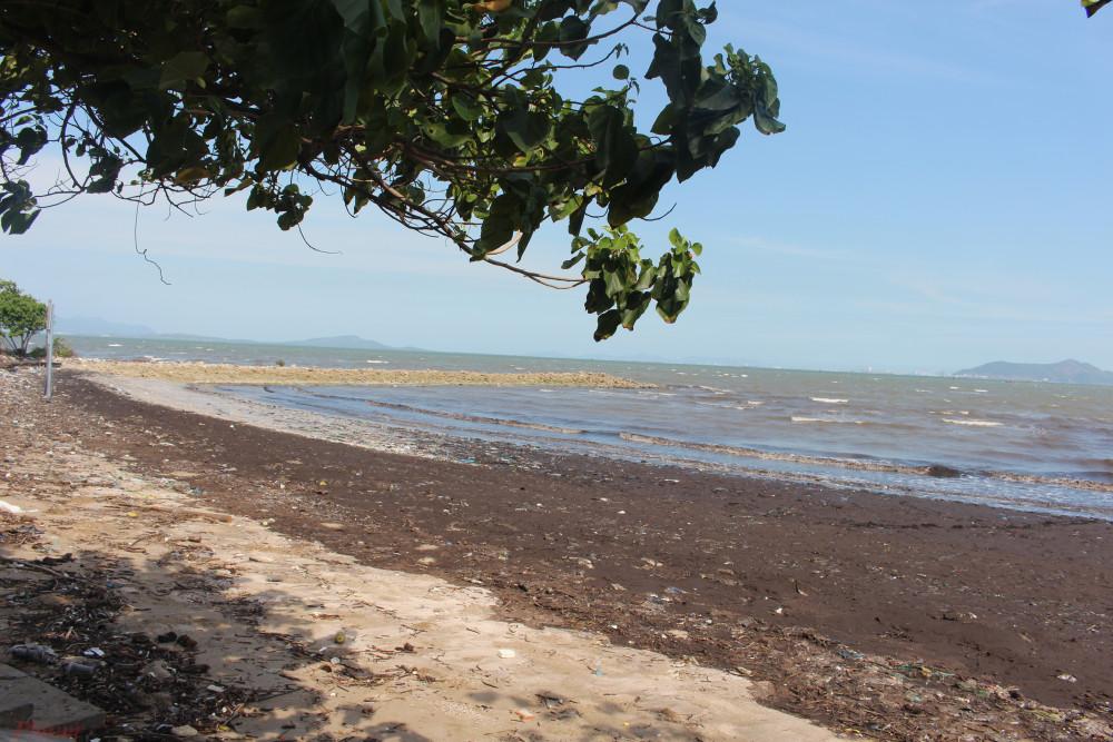 Biển Cần Giờ cát đen nên nước có màu hơi đục.