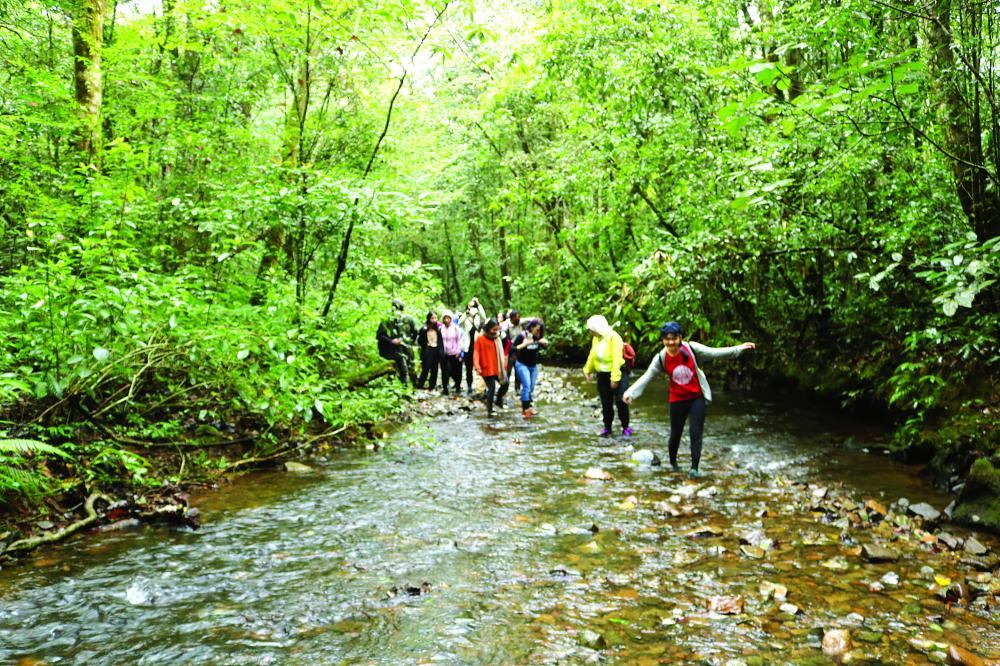 Vượt suối vào rừng