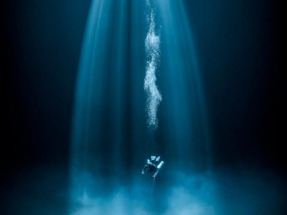 Martin Strmiska đạt giải cao nhất hạng mục ảnh góc rộng. chụp khoảnh khắc một người bạn lặn của anh lao xuống đáy biển giữa một vệt sáng màu xanh lơ đẹp mắt. Ảnh chụp tại Puerto Morelos, Mexico.