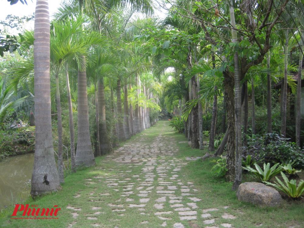 Vườn chào đón bạn bằng những lối đi xanh mướt dưới hàng cây.