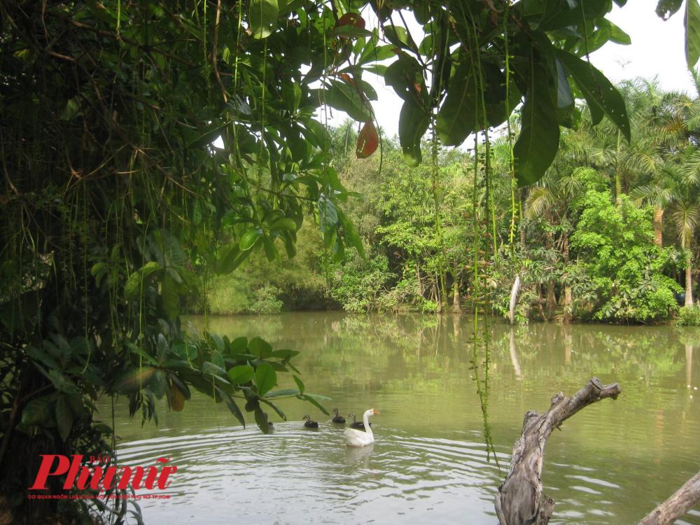 Không gian gần gũi bình yên mang dáng dấp miền sông nước.