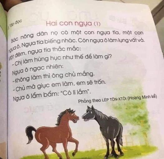 Một bài tập đọc trong SGK Cánh Buồm