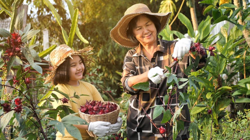 Người trẻ phải có trách nhiệm giúp người già tiếp cận kiến thức mới