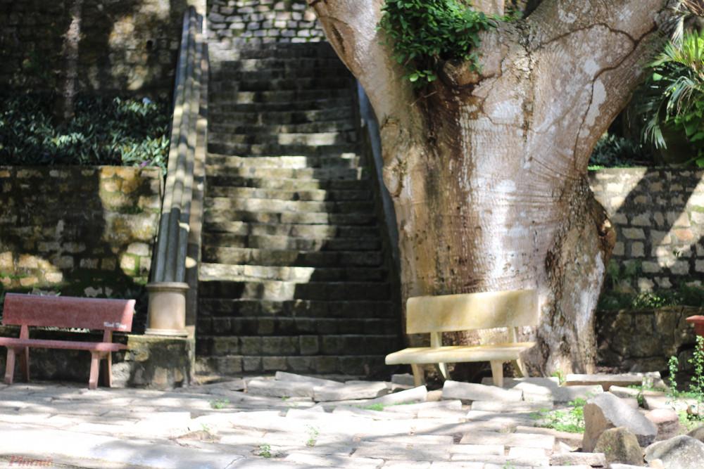 Không cần lên đỉnh núi, chỉ cần đến khu vực đài tưởng niệm trên núi Minh Đạm, bạn đã có thể cảm nhận không khí thoáng đãng, mát lạnh.