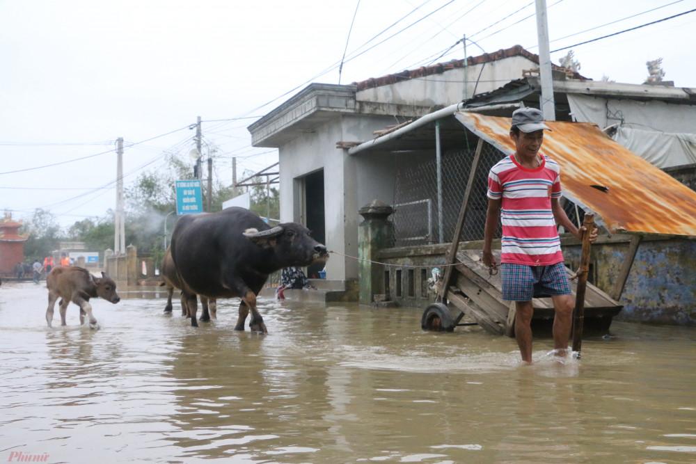 Từ ngày 17/10, UBND xã Hải Phong đã có văn bản đề nghị cấp trên hỗ trợ lương thực, nhu yếu phẩm, thuốc men và kiểm tra, có phương án cấp điện để người dân sớm ổn định cuộc sống.