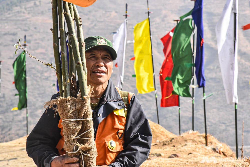 ông Phuntsho được ví như chiến binh cây tại Bhutan.