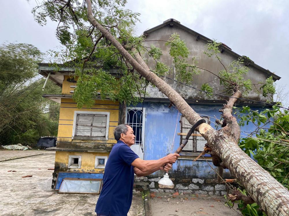 Tranh thủ trời ngớt mưa ông Võ Văn ở xã bình giang huyện thăng bình chặt tỉa nhánh cây để đường đi lại thông thoáng