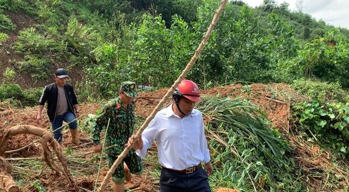 Các lực lượng vào cứu nạn tại Phước Lộc, Phước Sơn