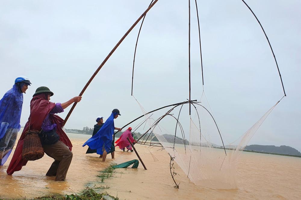 Người dân bất chấp nguy hiểm ra đồng đánh bắt cá