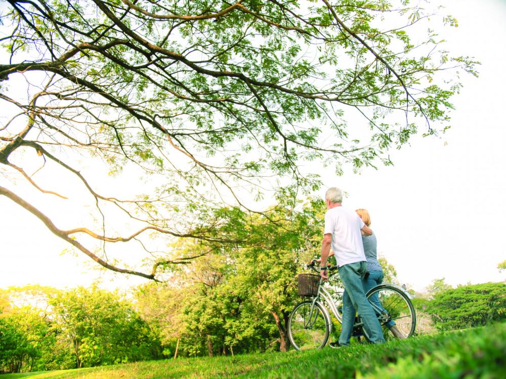 Phải yêu nhau thế nào mới có thể nắm tay lúc về già - Ảnh minh họa