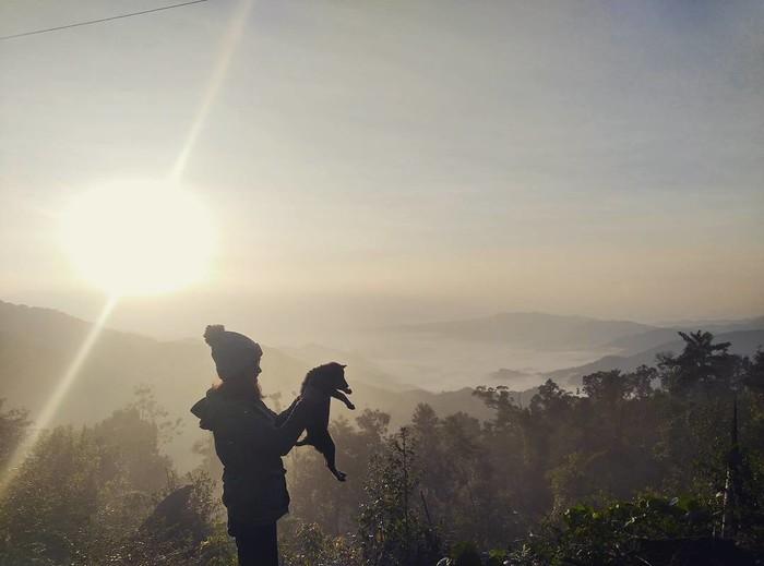 """Như một nét chấm phá rất riêng giữa lòng mảnh đất Quảng Nam quanh năm nắng gió, đỉnh Quế đích thị là một """"tiểu Sa Pa"""" mang đầy đủ những nét đặc trưng của núi rừng Tây Bắc. Hơn thế, địa danh này còn là một điểm săn mây lí tưởng được nhiều phượt thủ lựa chọn để chinh phục ở miền Trung."""