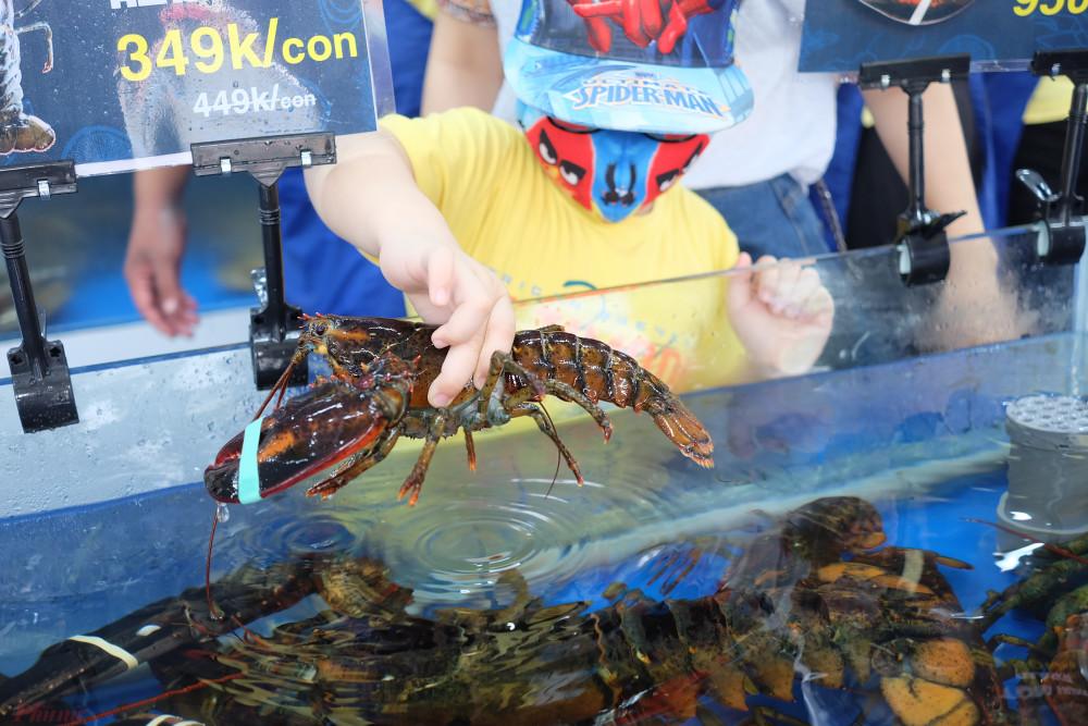 Với lũ trẻ, các vựa hải sản như một thủy cung thu nhỏ.