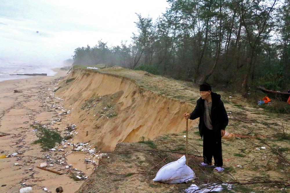 """Ông Nguyễn Văn Ngáo luyến tiếc nhìn rừng dương bị biển """"nuốt"""" từng ngày  - Ảnh: Thuận Hóa"""