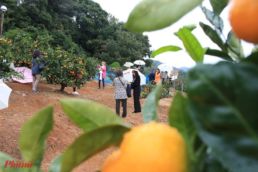 Aichi là tỉnh có dân số đông thứ tư Nhật Bản. Nơi đây thu hút du khách với những lâu đài cổ kính, văn hóa, lịch sử lâu đời. Gần đây, Aichi còn thu hút du khách với loại hình hoạt động hái các loại trái cây theo mùa như mùa đông sẽ hái cam quýt, mùa xuân hái dâu tây, mùa hè hái dưa lưới, còn mùa thu sẽ hái nho.