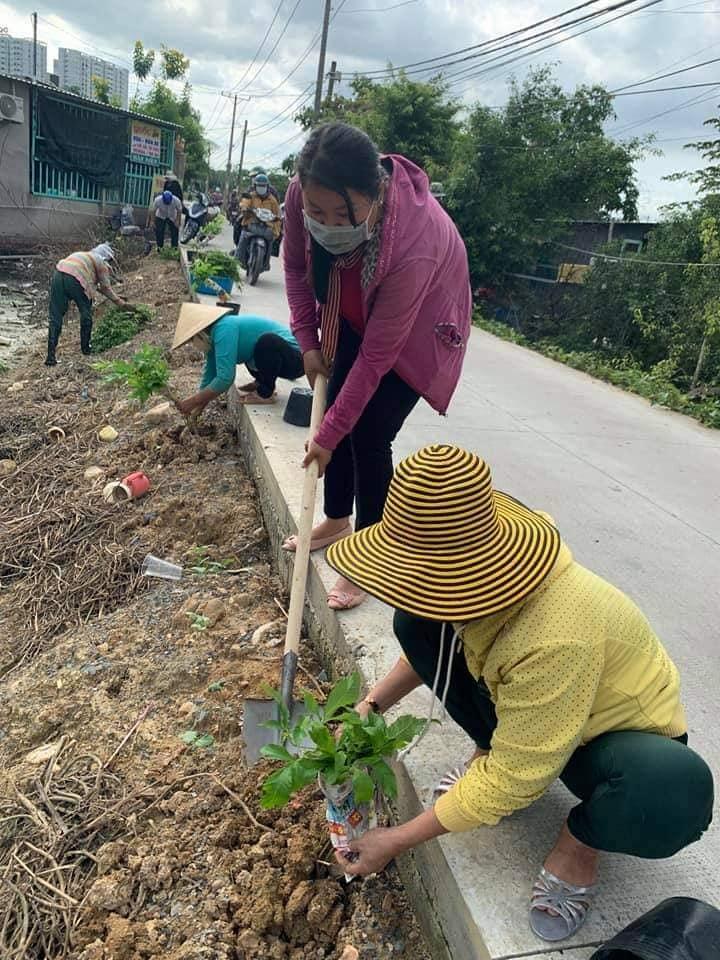 Hội viên phụ nữ vừa dọn vệ sinh, vừa trồng cây xanh và hoa cho các tuyến đường